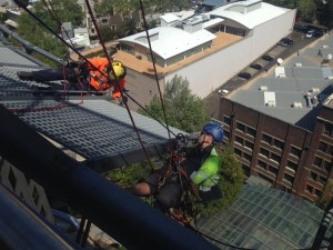 Specialist Height Repairs